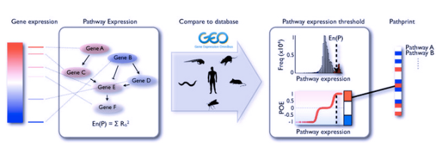 pathprinting分析架構圖